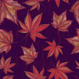 Autumnal seamless pattern with maple leaves on dark background. For textile, wallpaper, wrapping, web backgrounds and other pattern fills Stock Photo
