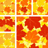 Autumnal seamless pattern with maple leaves. Royalty Free Stock Photo
