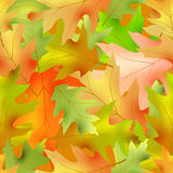 Autumnal seamless. Pattern,vector illustration clip-art Royalty Free Stock Photos