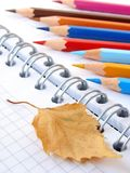 Autumnal sketching Royalty Free Stock Photos