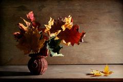 Autumnal still life Stock Photos