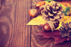Autumnal still life with acorn pinecone and yellow leaves on wooden board Stock Photos