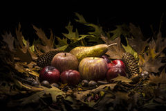Autumnal still life composition with apples, pear and prunes. Autumnal still life composition with green, yellow, brown and orange leaves, apples, pears, prunes stock image