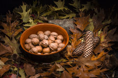 Autumnal still life composition: clay pot and walnuts Stock Photo