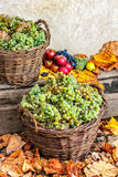 Autumnal still life with fruit and leaves on a wooden base Royalty Free Stock Photos
