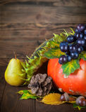 Autumnal still life with pumpkin and grapes on wooden board Royalty Free Stock Image