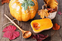 Autumnal still life with pumpkin and pumpkin shaped pot Stock Images