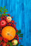 Autumnal still life with pumpkins, apples and rowanberry. On blue, top view, copy space Royalty Free Stock Photo