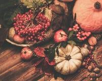 Autumnal still life Stock Photo