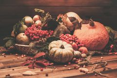 Autumnal still life Stock Photography