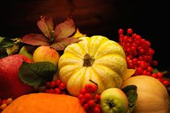Autumnal still life Stock Image