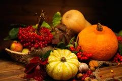 Autumnal still life Stock Image