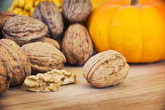 Autumnal still life walnuts and pumpkin Royalty Free Stock Image