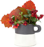 Autumnal stilllife. With lingonberries and aspen leaves Royalty Free Stock Photos