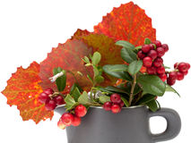 Autumnal stilllife. With lingonberries and aspen leaves Royalty Free Stock Photography