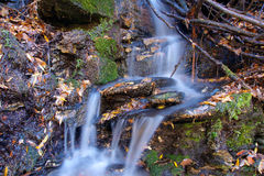 Autumnal stream Royalty Free Stock Images