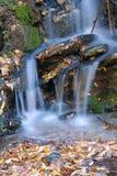 Autumnal stream Stock Image