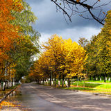 Autumnal street , scenery Royalty Free Stock Photography
