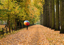 Autumnal stroll Royalty Free Stock Photography