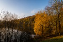 Autumnal sunlight at Deep Hayes Country Park in Staffordshire stock images