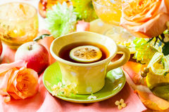 Autumnal table setting Royalty Free Stock Photo