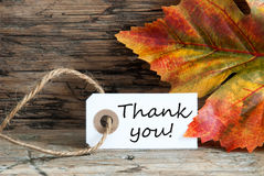 Autumnal Thank You Label Stock Photos