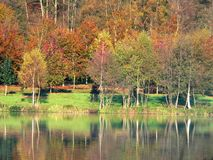 Autumnal trees. Reflected in river royalty free stock images