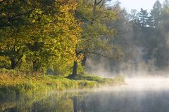 Autumnal trees over calm water Royalty Free Stock Photos