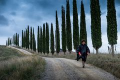 Autumnal trekking in the province of Siena, from Buonconvento to royalty free stock photo