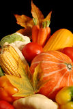 Autumnal vegetables royalty free stock photo