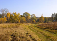 Autumnal view. Rural autumn landscape with road Stock Photos
