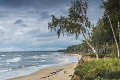 Autumnal view at the Baltic beach , Vidzeme, Latvia. Heavenly autumnal sky and stormy weather near village of Tuja, the gulf of Riga, Baltic Sea, Latvia, Europe Stock Image