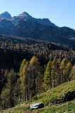 Autumnal view of a coniferous forest in the Alps. Autumnal morning light grazing the treetops of the mountain forest Stock Images