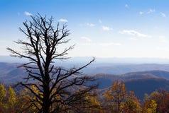 Autumnal view of North Carolina countryside Stock Photos