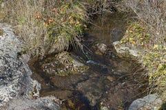 Autumnal view of  river Lokorska in stone riverside, Balkan mountain Stock Image
