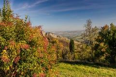 Autumnal Vineyards on badlands Royalty Free Stock Photos