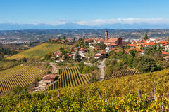 Autumnal vineyards and small town in Italy. Stock Photos