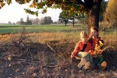 Autumnal walk royalty free stock photo
