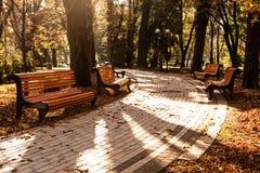 Autumnal walkway Royalty Free Stock Photos