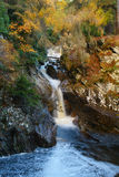 Autumnal waterfall Stock Photography