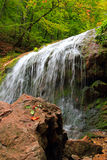Autumnal waterfall, stone, tree and berry Royalty Free Stock Photo
