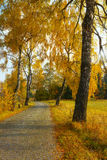 Autumnal Way Royalty Free Stock Photography