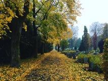 Autumncolors del sagrato di Grefsen di autunno di caduta Immagine Stock