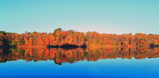 Autumn Lake Landscape Stock Photography