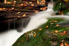 autumnm美丽的瀑布 免版税图库摄影