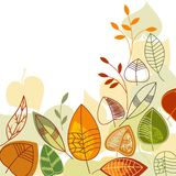Autumnn leaves background Royalty Free Stock Photo