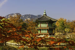 Autumnof Gyeongbokgung Palace in Seoul,South Korea. stock photos