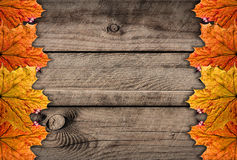 Autumns wooden Stock Image