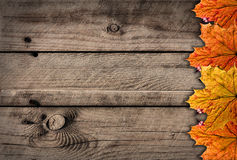 Autumns wooden Royalty Free Stock Photo