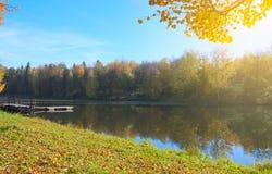 Autumntime Landschap met bomen met oranje gebladerte royalty-vrije stock foto's